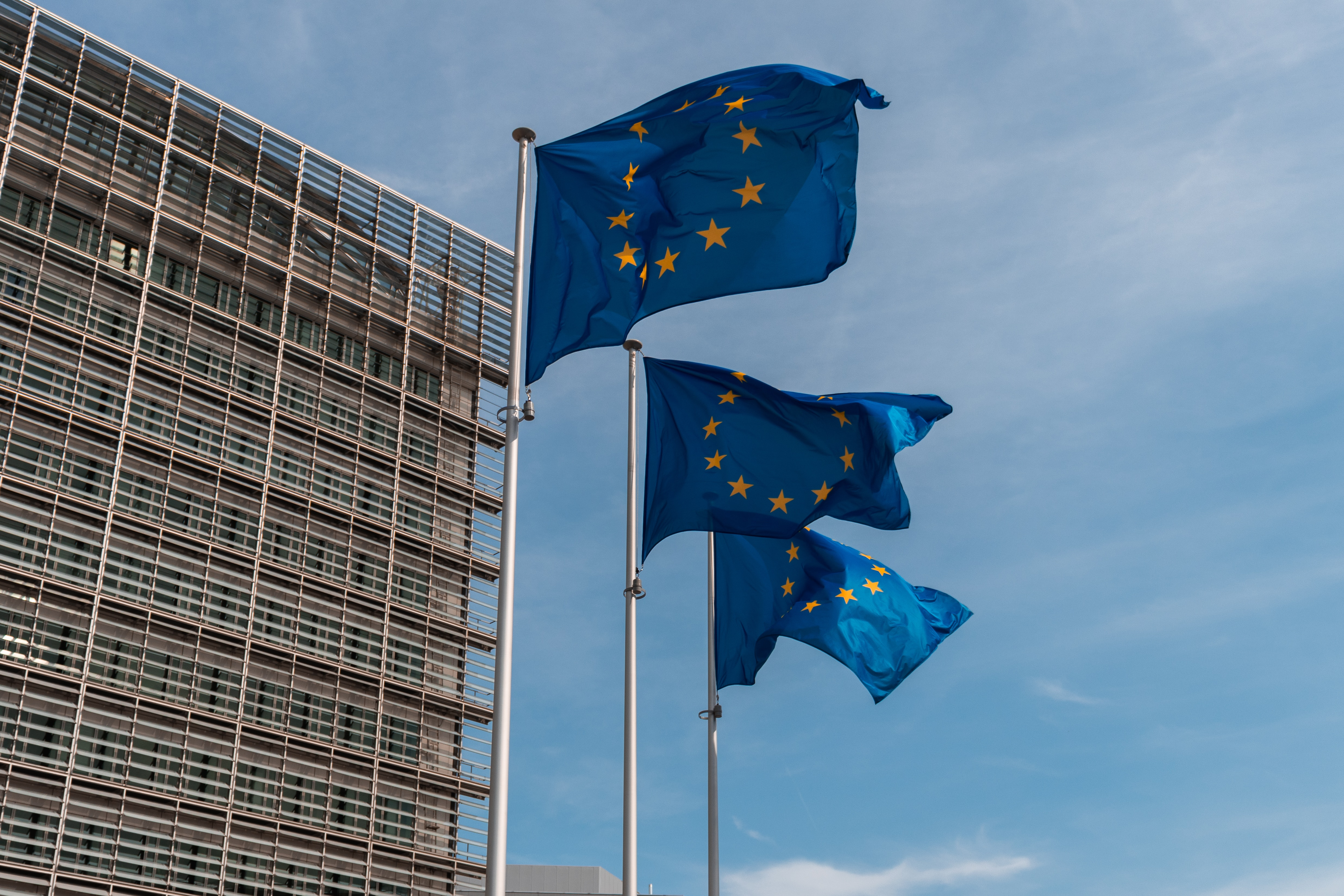 Policy WG logo - European flags outside the Berlaymont