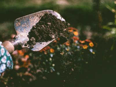 A shovel with some soil