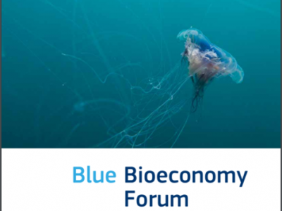 Blue Bioeconomy Forum roadmap
