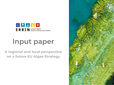 ERRIN input paper on a future EU Algae Strategy