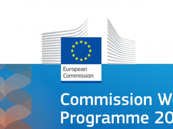 Commission adopts its 2021 work programme